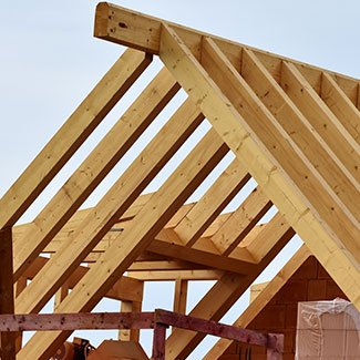 Захист конструкційної деревини