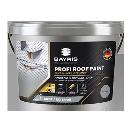 "Професійна фарба для дахів ""Profi Roof Paint"""
